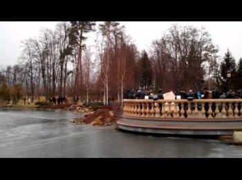 Mezhyhirya, February 22, 2014