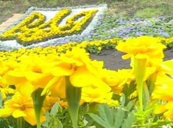 На Європейській площі в Києві створили п'ять патріотичних клумб, 06.06.2014