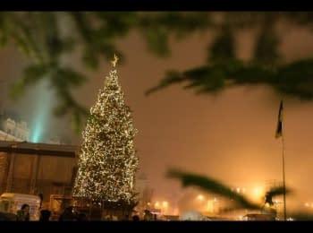 Opening of the main Christmas tree of Ukraine