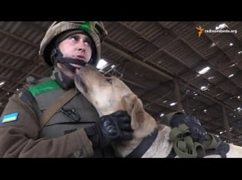 Пес, который спасает жизни в зоне АТО