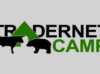 Tradernet Camp