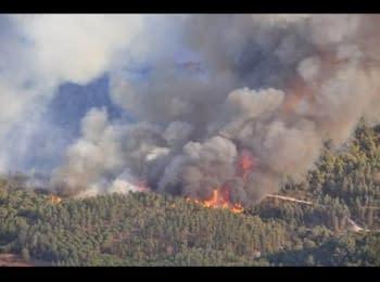 Сильна лісова пожежа під Чорнобилем, 28.04.15