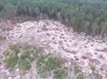 Illegal mining of amber in Zhytomyr region