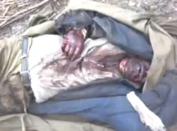 Солдаты ВСУ взяли в плен пророссийского боевика (18+, ненормативная лексика)