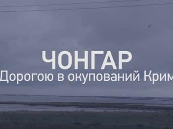 Дорогою в окупований Крим. Чонгар.
