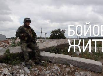 """Боевая жизнь. Полк """"Днепр-1"""" под Широкино"""
