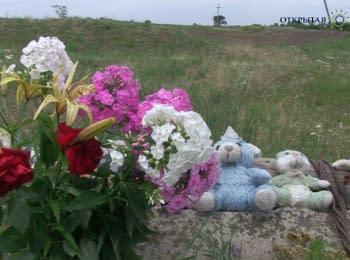 """""""Вони летіли, розкинувши руки, та падали на землю"""" - свідок катастрофи MH17"""
