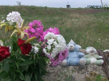 """Они летели, раскинув руки, и падали на землю"" - свидетель крушения MH17"