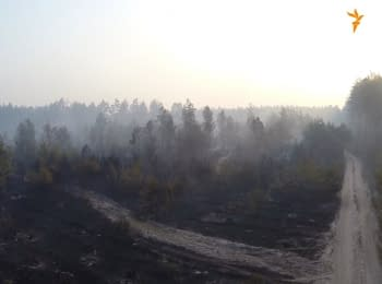 Consequences of a large-scale forest fires in Kyiv (footage from a drone)