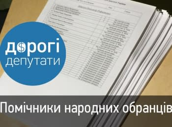 """""""Expensive deputies"""": Assistants of the odious VII convocation deputies and the new law on local elections"""
