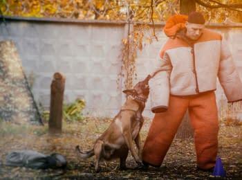АТЕК. Змагання собак