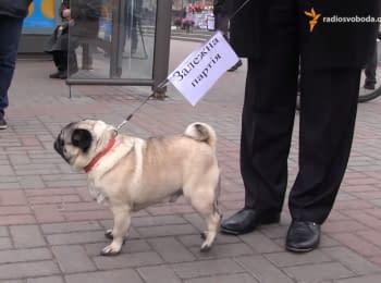 """В Черкассах """"Олигарх"""" водил """"Зависимую партию"""" на поводке"""