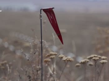 Donbas: minefield in the garden