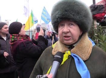 Протест предпринимателей и аграриев против налоговой реформы, 17.12.2015