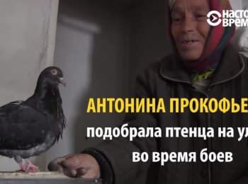 Одиночество под бомбами. Старушка и голубь