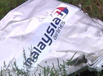 Катастрофа MH17. Позов проти Путіна