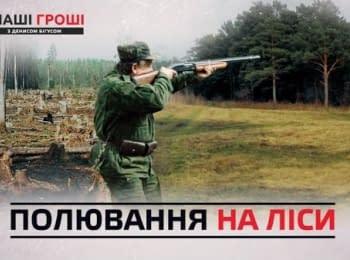 """""""Наші Гроші"""": Пшонка і Арбузов зберегли свій ліс. Лісничі полюють у заказниках"""