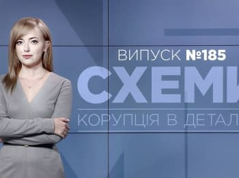 """""""Схеми"""": Виконроб Донбасу Максим Єфімов. Справа Седлецької і ГПУ: деталі"""